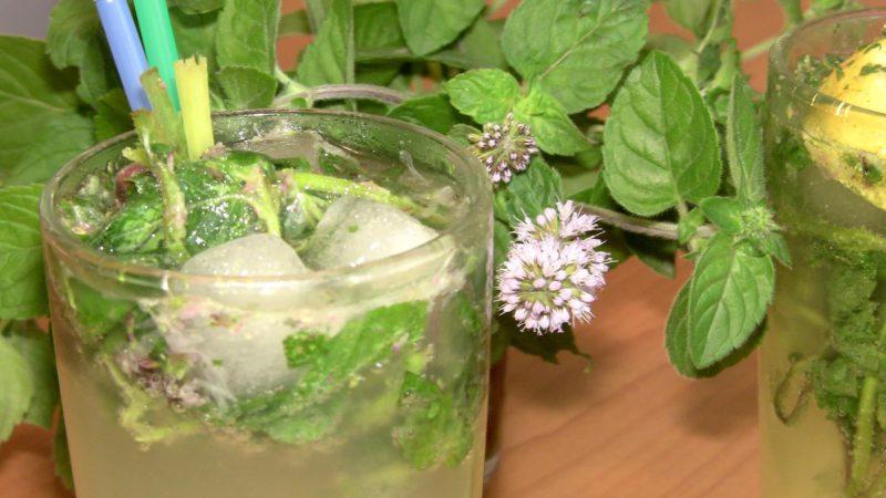 мохито рецепт