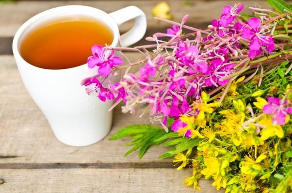 как готовить почечный чай