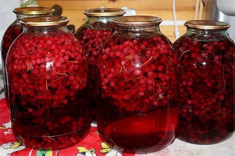 как приготовить компот из малины