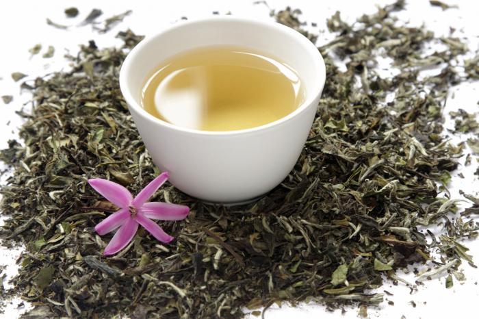как сделать белый чай